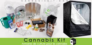 pack chambre de culture cannabis kit lancement cannabis kit