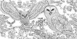 coloring page for adults owl hard animal coloring pages animorphia owls adult printable arilitv