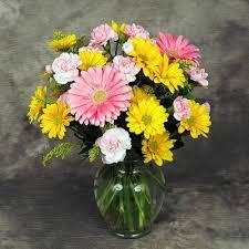 mixed spring daisy vase kremp com