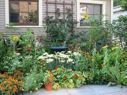 impressive amazing herb garden ideas best 25 herb garden design