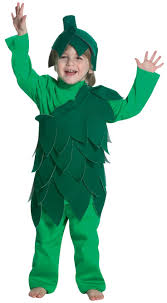 Food Costumes Kids Food Drink Halloween Costume Ideas 17 Costuming Images Cactus Costume Costume