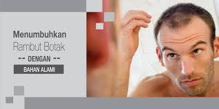 obat rambut penumbuh rambut botak mengatasi rambut rontok menumbuhkan rambut botak dengan khasiat bahan alami oleh admin