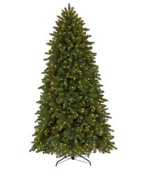 Outdoor Christmas Trees by How To Pick An Outdoor Christmas Tree