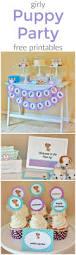 best 25 happy birthday chuck ideas on pinterest happy birthday