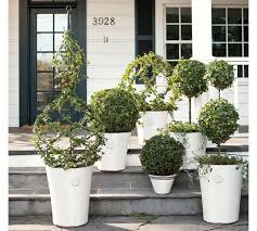 Pottery Barn Where I Live Beautiful Live Ivy Topiary Part 10 Pottery Barn Home