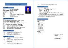 form daftar riwayat hidup pdf format cv yang baik pdf contoh cv daftar riwayat hidup yang menarik