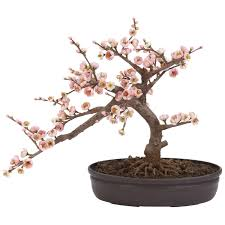 amazon com nearly natural 4764 cherry blossom bonsai artificial
