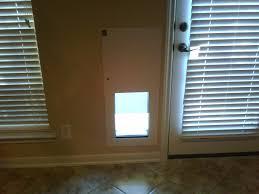 Cat Door For Interior Door by Pet Door Installation Gallery San Antonio Pet Door U0026 Electric