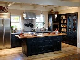 Black Kitchen Cabinets by Black Kitchen Cabinets Hometutu Com
