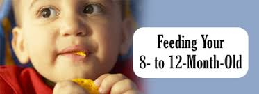 table food for 9 month old feeding your 8 to 12 month old