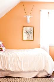 Light Paint Colors For Bedrooms Light Colors To Paint Bedroom Joze Co
