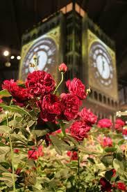 50 best philadelphia flower show images on pinterest travel