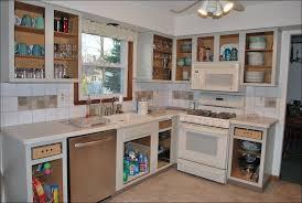 Vanity Unit Doors Kitchen Cabinet Door Hinges Lowes Pantry Cabinet Lowes