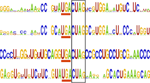 compbio mit computational biology group kellis lab paper explorer