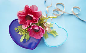 hd images of flowers hd flower gift 5826 flowers gifts festival
