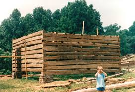 One Story Log Cabins A Double Pen Log Barn Part 7 Handmade Houses With Noah Bradley