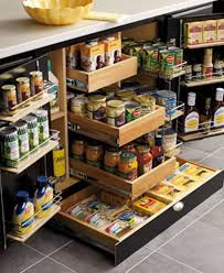 lower kitchen cabinet storage ideas lower cabinet pantry i saw this the other day and didn t