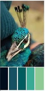 color palette peacock color paint wheel fabric swatch
