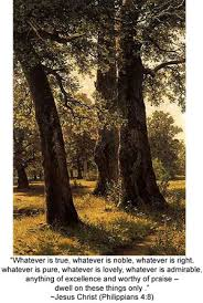 celtic meaning of the oak tree oak celtic meaning