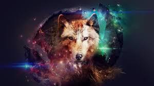 imagenes de fondo de pantalla lobos lobo fondos de pantalla en alta definición my hd wallpapers com