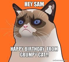 Grumpy Cat Meme Happy Birthday - hey sam happy birthday from grumpy cat cartoon grumpy cat make