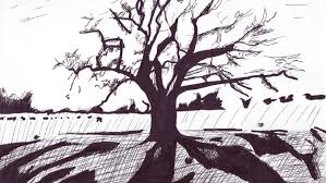 White Oak Tree Drawing Pen Drawing Of A Oak Tree Youtube