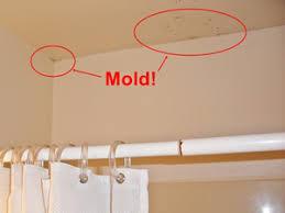 Black Mould In Bathroom Dangerous Toxic Mold