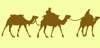 camel coloring pages