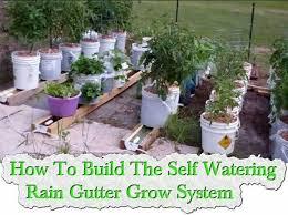 41 best self watering pot gardening images on pinterest