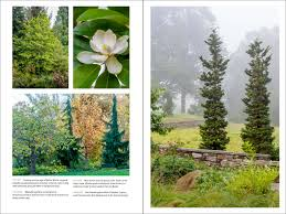 edge of the woods native plant nursery the art of gardening design inspiration and innovative planting