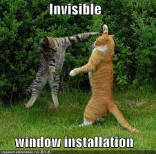 Invisible Cat Memes - invisible cat meme the trupanion blog