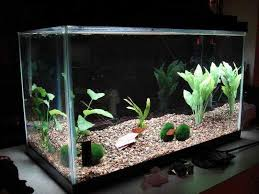 aquarium decorations airplane aquarium decorations ideas