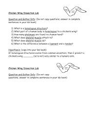 chicken wings anatomy choice image learn human anatomy image
