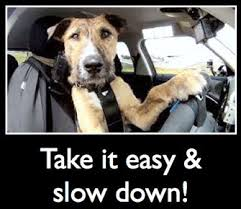 Take It Easy Mexican Meme - luxury take it easy mexican meme drive on eggshells to save fuel