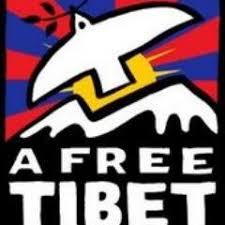 tibetan bureau office sft india on opening speech mr tsewang gyalpo arya