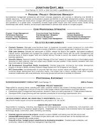 Business Manager Resume Sample by Appealing It Program Manager Resume Sample Displaying Core