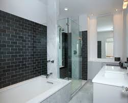 tiles for bathroom walls ideas bathroom wall tile ideas houzz