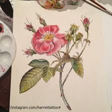wild rose tattoo google search tattoo pinterest wild rose