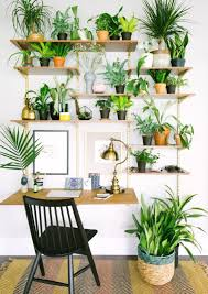 Best Plants For Bedroom The 25 Best Plant Shelves Ideas On Pinterest Bathroom Ladder