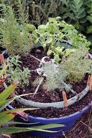 herb garden pictures zandalus net