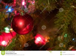 bulb with colored lights on tree stock image image
