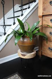 Planter With Legs by Fancy Ways To Refresh Your Furniture With Hairpin Legs