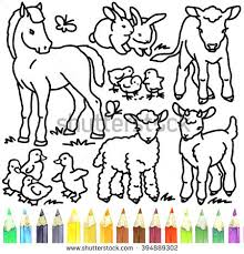 foal rabbit calf gosling lamb stock illustration 394889302
