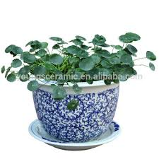 7pcs set jingdezhen blue and white ceramic garden flower plant