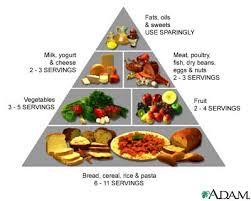 student food tips england edu