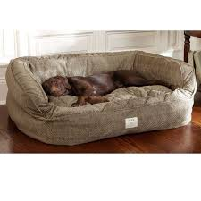 pet couch bed foter