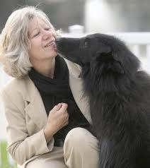 belgian sheepdog nationals eli a therapy dog who died this year will be honored at national