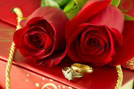 red rose rings images Red roses and wedding rings on gift box photober free photos jpg