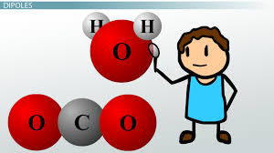 lewis dot structures polyatomic ions video u0026 lesson transcript