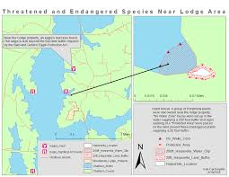 geographic information system new york harbor seals